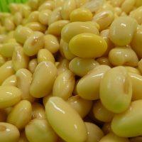 日野産大豆